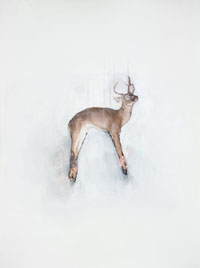 Hanging Buck by Josh Winegar